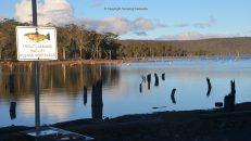 camping lake leake tasmania