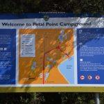 Camping Petal Point